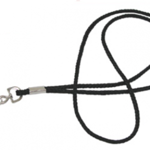 Lanyard with attachment hook